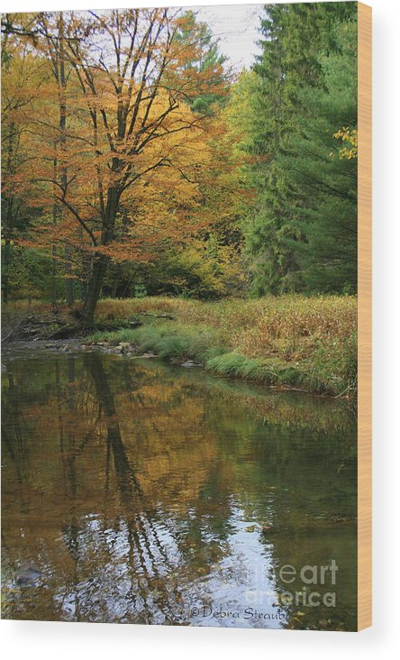 Autumn Wood Print featuring the photograph Autumn Reflections by Debra Straub