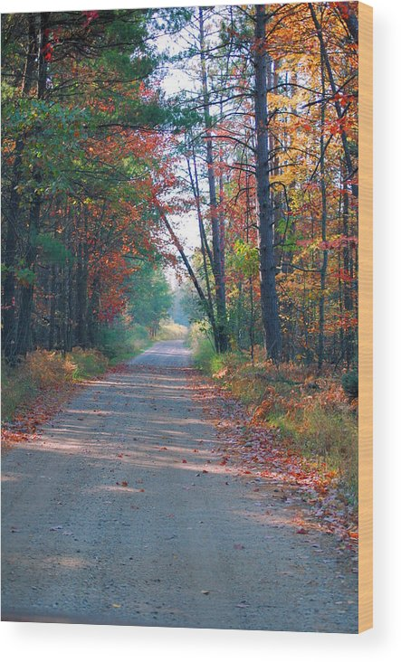 Autumn Wood Print featuring the photograph Autumn Road by Jennifer Englehardt