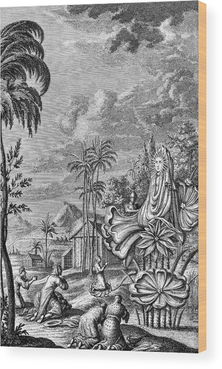 Ancient Wood Print featuring the photograph Babylon: Sun Worship by Granger