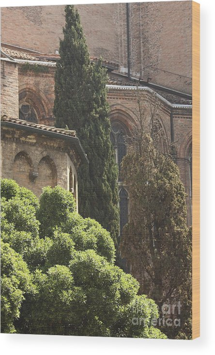 Venice Wood Print featuring the photograph Back Of Church Of The Frari In Venice by Michael Henderson