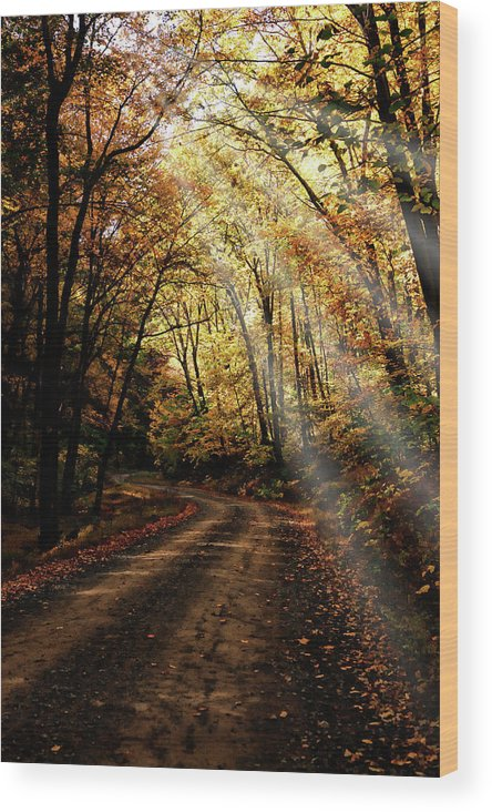 Autumn Wood Print featuring the photograph Backcountry Road by Hugh Smith