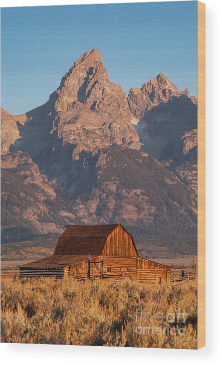 Jackson Hole Wood Print featuring the photograph Barn In The Tetons One by Bob Phillips
