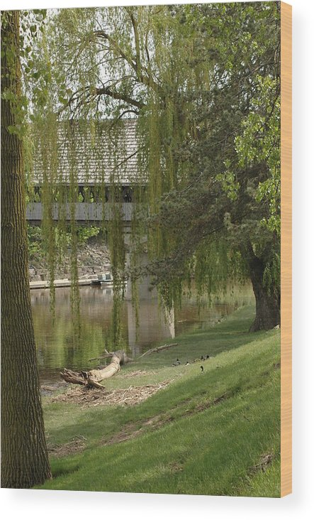 Usa Wood Print featuring the photograph Bavarian Covered Bridge Over The Cass River Frankenmuthmichigan by LeeAnn McLaneGoetz McLaneGoetzStudioLLCcom