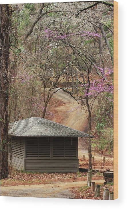 Nature Photographs Wood Print featuring the photograph Beautiful Get-a-way by Kim Henderson