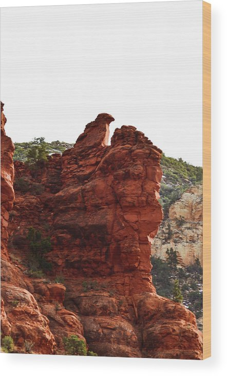 Landscape Wood Print featuring the photograph Bird Of Rock by Julie Thurgood