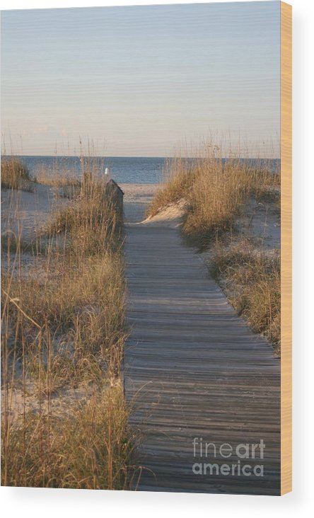 Boardwalk Wood Print featuring the photograph Boardwalk To The Beach by Nadine Rippelmeyer