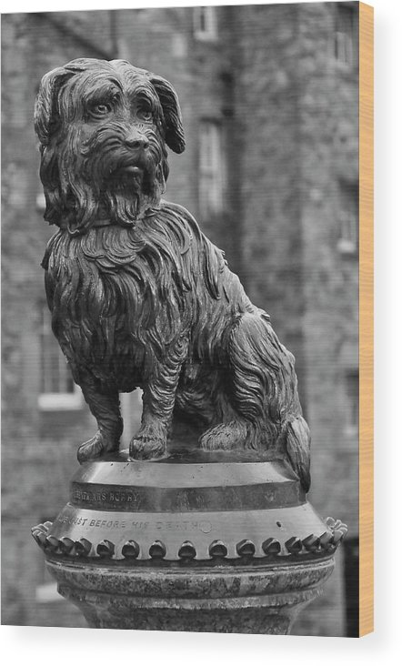 Sculpture Wood Print featuring the photograph Bobby by Martina Fagan