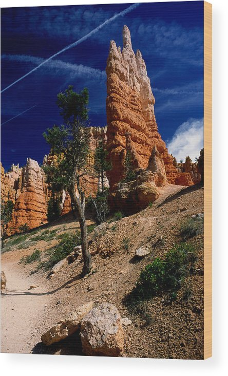 Bryce Canyon Wood Print featuring the photograph Bryce Canyon 10 by Art Ferrier