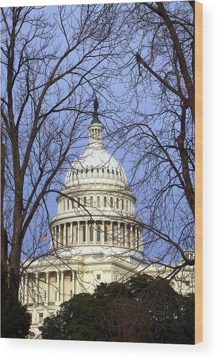 Capitol Wood Print featuring the photograph Capitol by Mitch Cat