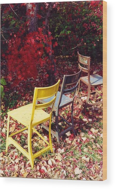Fall Landscape Wood Print featuring the photograph Chairs by Evelynn Eighmey