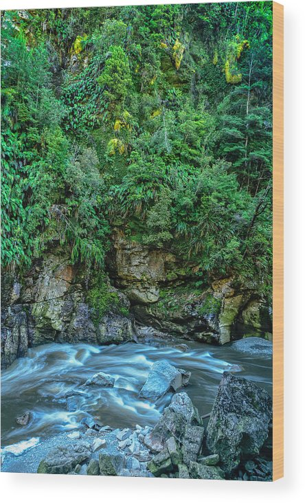 New Zealand Wood Print featuring the photograph Charming Creek Walkway 2 by Robert Green