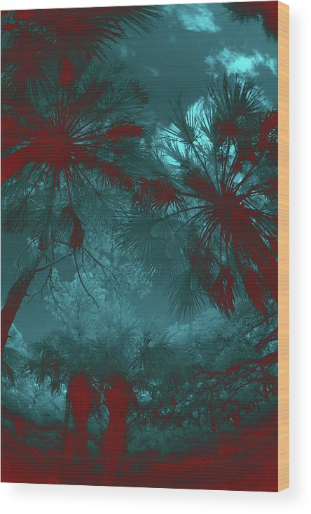 Trees Wood Print featuring the photograph Children 2 by Gary Bartoloni