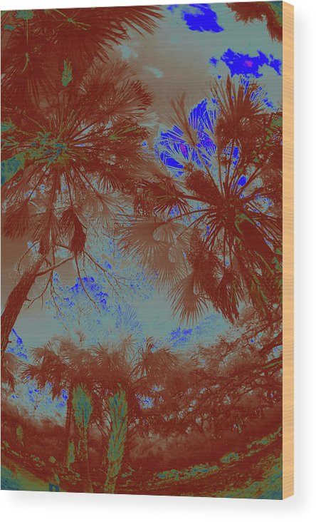 Trees Wood Print featuring the photograph Children 20 by Gary Bartoloni