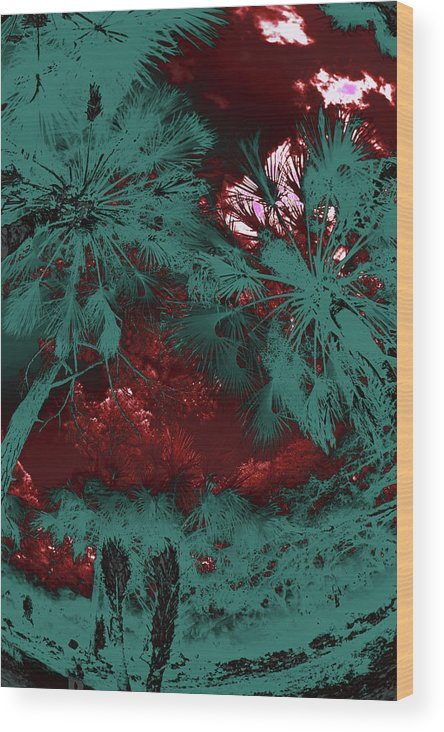 Trees Wood Print featuring the photograph Children 22 by Gary Bartoloni