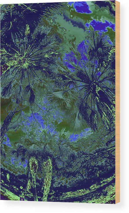 Trees Wood Print featuring the photograph Children 32 by Gary Bartoloni