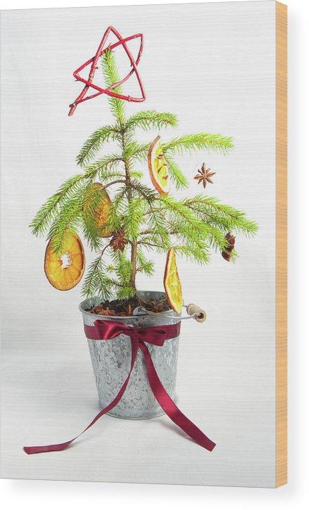 Helen Northcott Wood Print featuring the photograph Christmas Tree by Helen Northcott