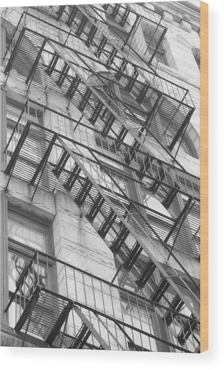 Wood Print featuring the photograph Climbing Up by Stacy Devanney