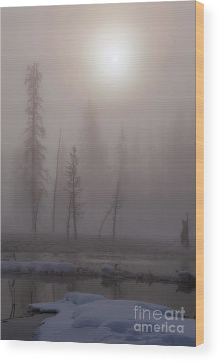 Yellowstone National Park Wood Print featuring the photograph Cold Morning Mist by Bob Phillips