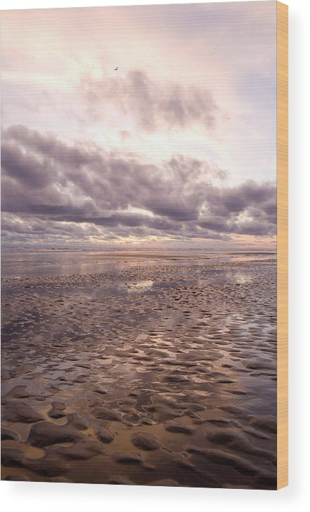 Beach Wood Print featuring the photograph Collective Sigh by Jennifer Owen