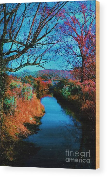 Color Wood Print featuring the photograph Color Along The River by Diana Dearen