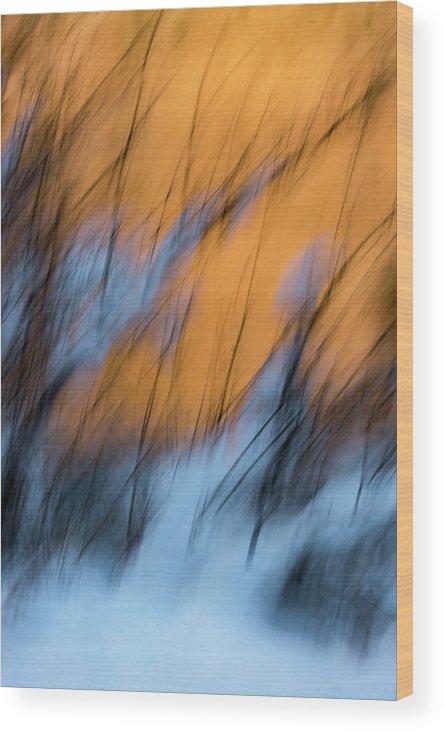 Abstract Wood Print featuring the photograph Colorado River Snow Banks by Deborah Hughes