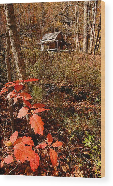 Log Cabin Wood Print featuring the photograph Cook Cabin by Alan Lenk