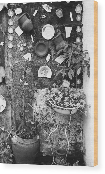 Garden Wood Print featuring the photograph Corner Garden - Sao Miguel - Azores by Henry Krauzyk