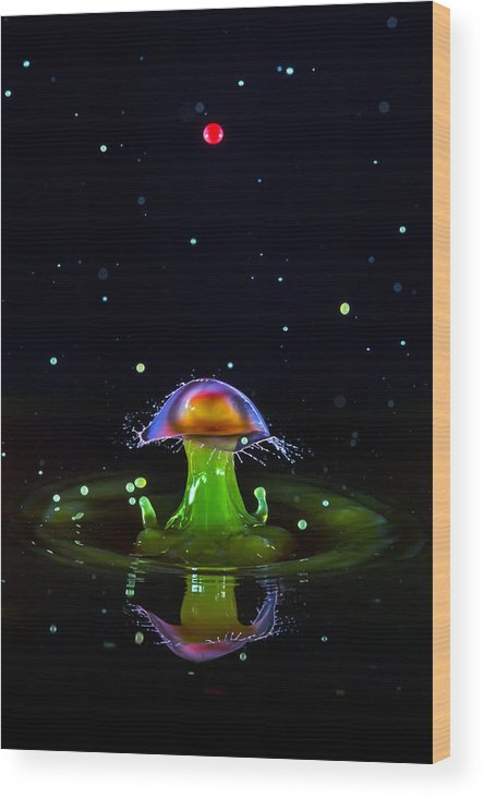 Abstract Wood Print featuring the photograph Cosmic Mushroom by Robert Storost