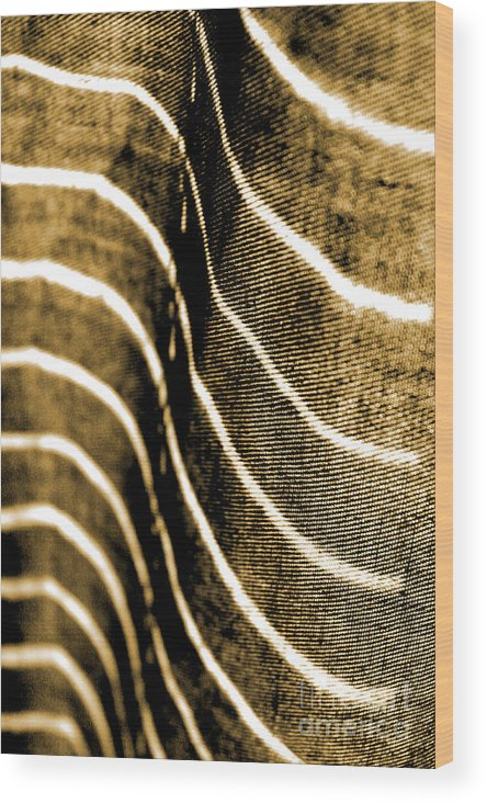 Abstract Wood Print featuring the photograph Curves And Folds by Todd Blanchard
