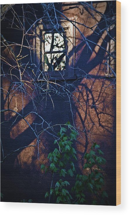 Shadows Wood Print featuring the photograph Dark Crossings by Robert P Meyer Jr