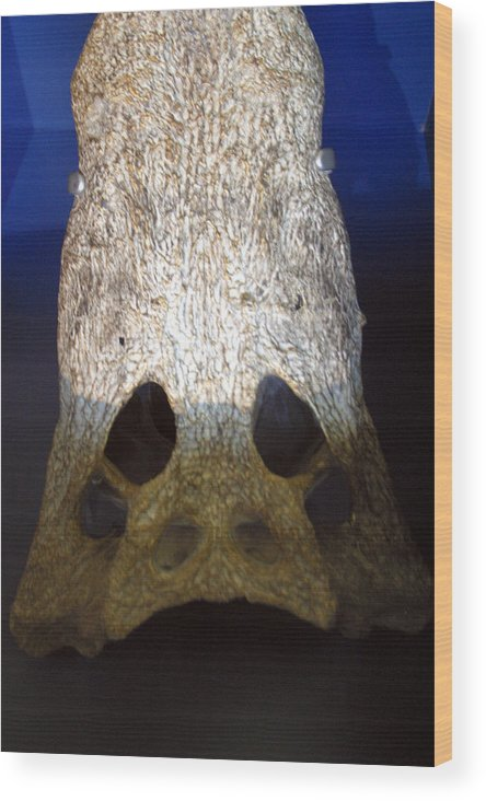 Jez C Self Wood Print featuring the photograph Death Mask For Some by Jez C Self