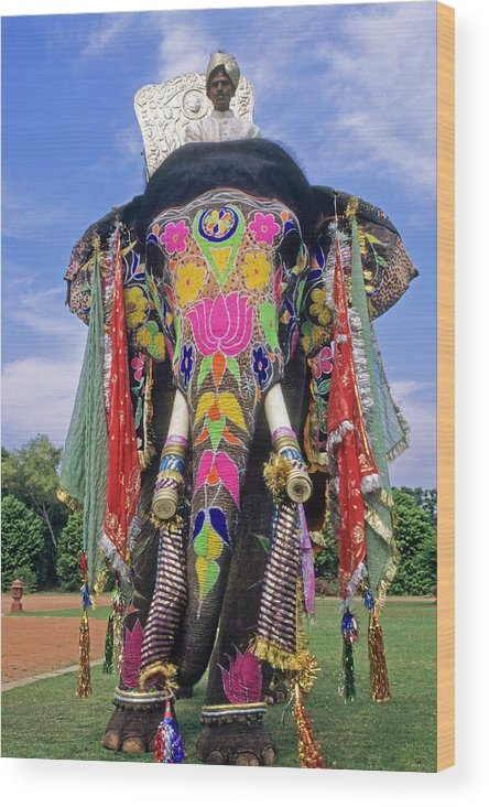 Asia Wood Print featuring the photograph Decorated Indian Elephant by Michele Burgess
