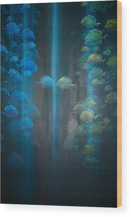 Fish Wood Print featuring the painting Dialogue II by Ana Bikic