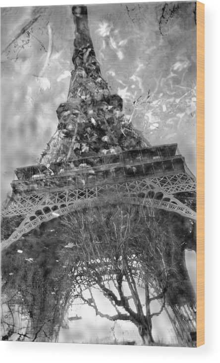 Eiffel Tower Wood Print featuring the photograph Eiffel Tower In Reflecting Pool Paris by Brett Wexler