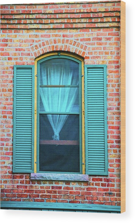 Elgin Wood Print featuring the photograph Elgin Illinois Window by Ira Marcus