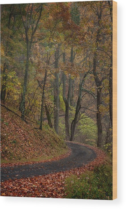 Landscape Wood Print featuring the photograph Endless Road by Kevin Hurley