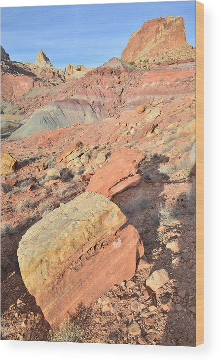 Capitol Reef National Park Wood Print featuring the photograph Entrance To Cohab Canyon by Ray Mathis