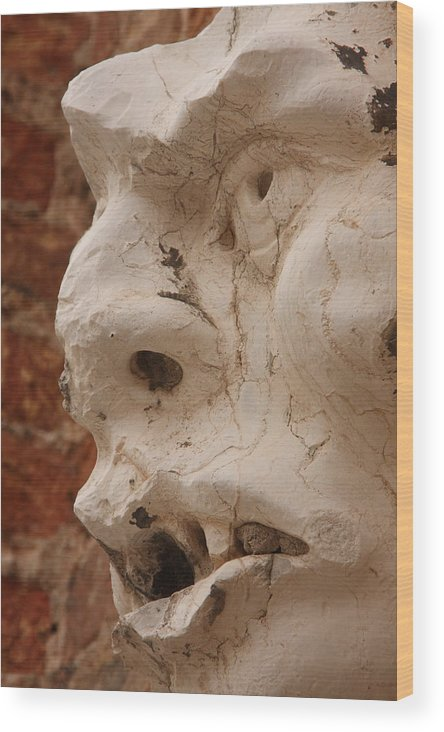 Venice Wood Print featuring the photograph Face On San Trovaso Bell Tower by Michael Henderson