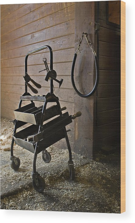 Horse Wood Print featuring the photograph Farriers Tools by Jack Goldberg