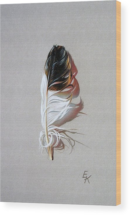 Still Life Feather Wood Print featuring the drawing Feather And Shadow 3 by Elena Kolotusha
