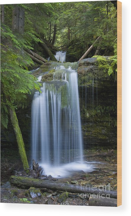 Waterfalls Wood Print featuring the photograph Fern Falls by Idaho Scenic Images Linda Lantzy