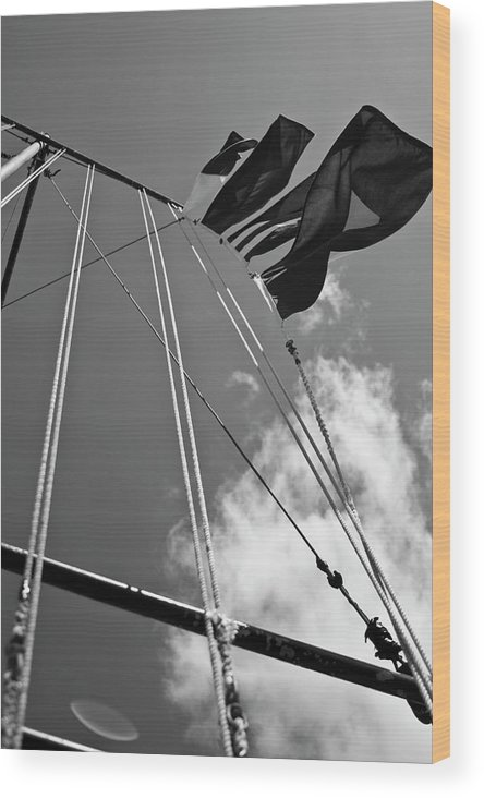 Charleston Sc Wood Print featuring the photograph Flags In The Wind by Witt Lacy