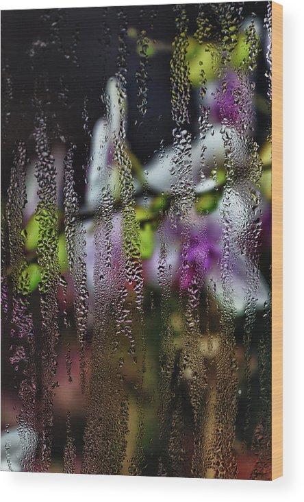 Fine Art Wood Print featuring the photograph Flower Shop Window 4 by Robert Ullmann