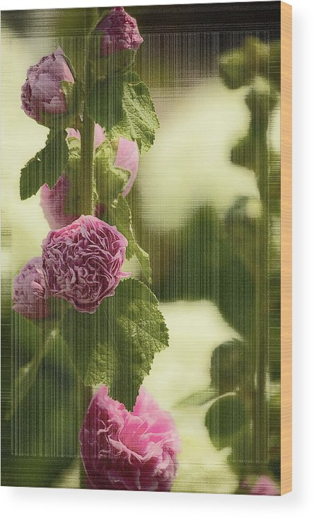 Flowers Wood Print featuring the photograph Flowers Behind The Screen by Melvin Busch