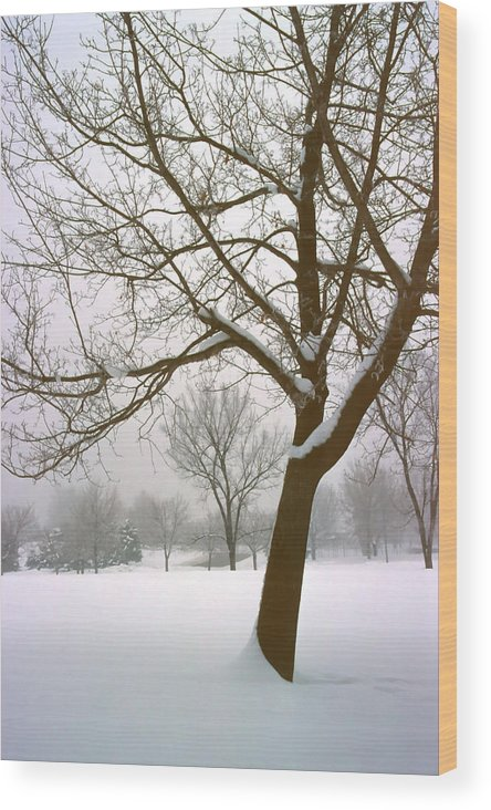 Fog Wood Print featuring the photograph Foggy Morning Landscape 14 by Steve Ohlsen