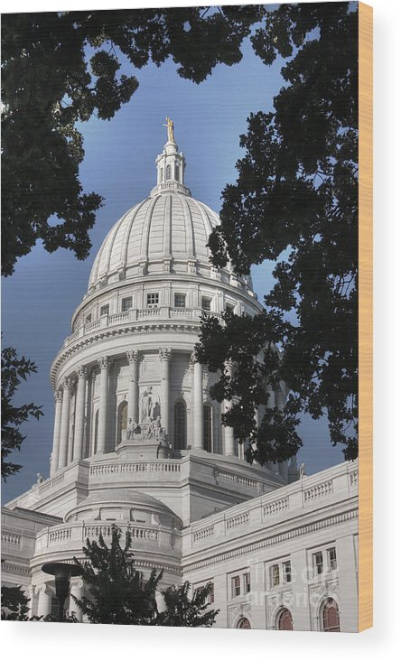 Madison Wisconsin Wood Print featuring the photograph Framed Capitol by David Bearden