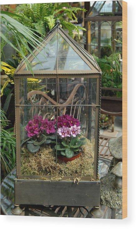 Flower Wood Print featuring the photograph Garden 44 by Joyce StJames