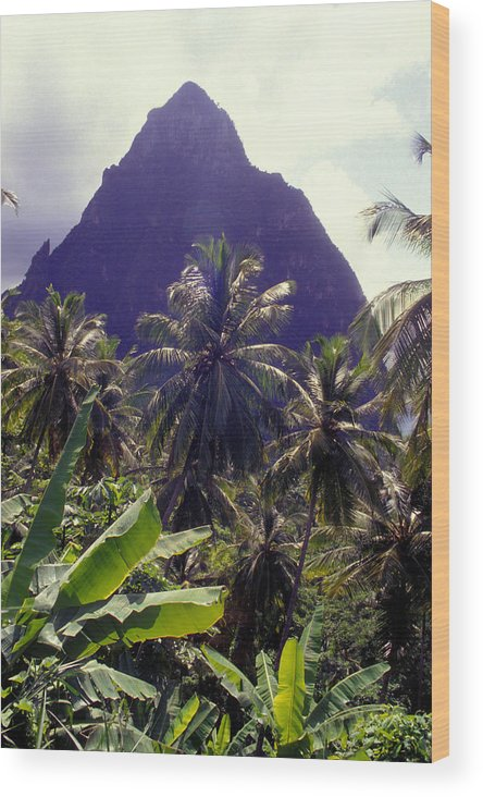 Caribbean Wood Print featuring the photograph Grand Piton by Carl Purcell