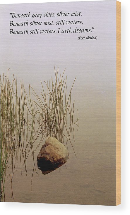 Fog Wood Print featuring the photograph Haiku Poster by Roger Soule