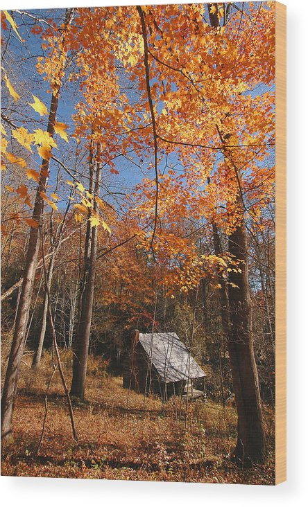 Log Cabin Wood Print featuring the photograph Hannah Cabin by Alan Lenk